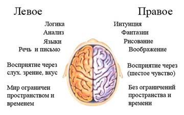Упражнение ума для развития мозга
