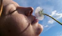О целях и желаниях в жизни