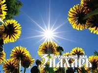 narada: волшебное уСиление от растений