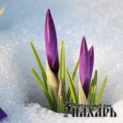 Праздник Масленицы – комоедицы. Можно ли радоваться на поминках?
